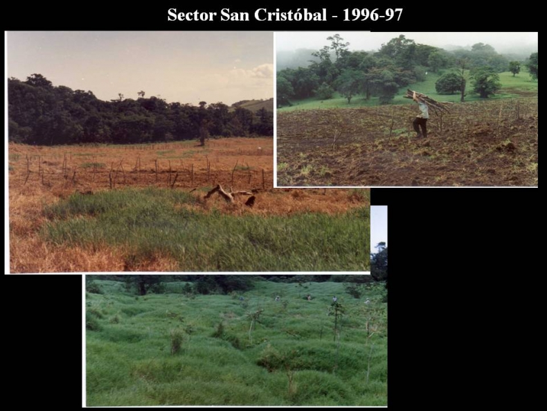 Sector San Cristobal 1966 - 1997.
