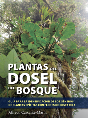 Plantas del dosel del Bosque