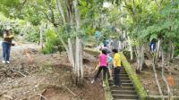 Empresas promueven la protección del medio ambiente haciendo voluntariado en ACG