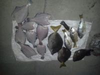 Decomiso y detención por pesca ilegal en Sector Santa Rosa (Parque Nacional Santa Rosa)