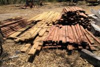Decomiso por tala ilegal en Santa Cecilia de la Cruz Guanacaste